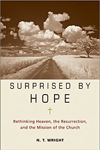 N. T. Wright – Surprised by Hope Audiobook